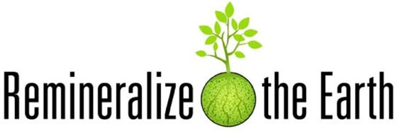 Remineralize the Earth logo